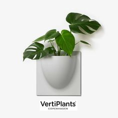 New grey VertiPlants out now.