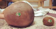 Look at the Size of That Kiwi! - Funny Baby - Look at the Size of That Kiwi! The post Look at the Size of That Kiwi! appeared first on Gag Dad. Parenting Fail, Parenting Humor, Parenting Teenagers, Parenting Goals, Foster Parenting, Animal Jokes, Left Alone, Dad Humor, Funny Humor