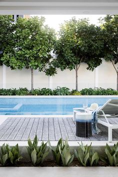 A modern pool and alfresco entertaining space connects the house, outdoor areas and bay. A modern pool and alfresco entertaining space connects the house, outdoor areas and bay. Swimming Pool Landscaping, Small Swimming Pools, Swimming Pool Designs, Backyard Landscaping, Landscaping Ideas, Landscaping Around Pool, Small Indoor Pool, Indoor Outdoor, Small Patio