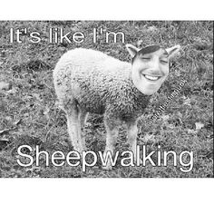"Lol ("": sleepwalking (sheepwalking) Bring Me The Horizon"