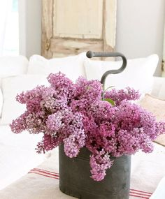 Dreamy Whites - Eclectic - Living Room - Other Metro - Dreamy Whites Lilac Flowers, Love Flowers, Beautiful Flowers, Fresh Flowers, Colorful Flowers, Lilac Tree, Rustic Flowers, Simply Beautiful, Eclectic Living Room