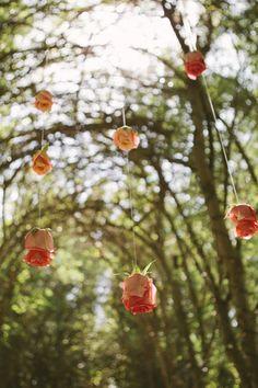 Ceremony details at Hartley's Botanical Gardens