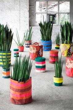 Sacos para colocar plantas: Estilo mexicano