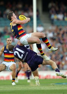 Patrick Dangerfield Adelaide Sports Stars, Crows, Poses, Ravens, Figure Poses, Raven, Crow