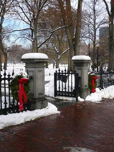 Boston Christmas.  Simple and beautiful