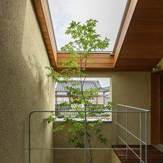 松栄の家 #滋賀県建築家 #滋賀県設計事務所 #ハース建築設計事務所 #heartharchitects #アオダモ #住宅 #中庭のある家 #バルコニー #甲賀市 #造園