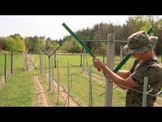 Tworzenie rusztowań i rozciąganie drutów dla winorośli - YouTube