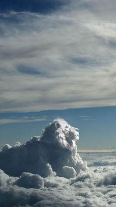 Lion of clouds in the sky. Lion of Judah. Cool Pictures, Cool Photos, Beautiful Pictures, Angel Pictures, Beautiful World, Beautiful Places, King Of The World, Free Iphone Wallpaper, Mobile Wallpaper