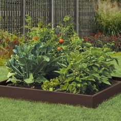 5 Tips for Planning Your Vegetable Garden - Right, Now | Wayfair