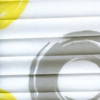 Online Pleated Blinds