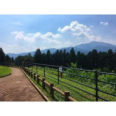 【erika.0121】さんのInstagramをピンしています。 《#群馬 #赤城 #高原 #パーキング #空 #雲 #山 #森 #夏 #フォロー #フォロバ #japan #sky #clouds #gunma #mountains #sunny #summer #forest #awesome #beautiful #nofilter #follow4follow #f4f》