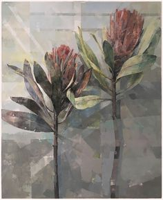 Available: Flower Forms and Shadows, a sought-after oil painting of proteas by fine artist Jeannie Kinsler for sale, size 65 x 80 x 3 cm. Protea Art, Protea Flower, Australian Native Flowers, Acrylic Painting Flowers, Floral Drawing, Encaustic Art, First Art, Art Flowers, Wild Flowers