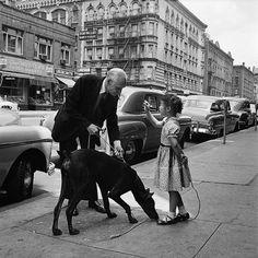 girl and dog, NYC, 1950's