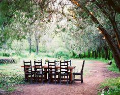 Ботаника: стилизованная фотосессия - Weddywood