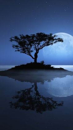 Rising Full Moon | Amazing Pictures - Amazing Pictures, Images, Photography from Travels All Aronud the World