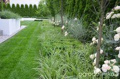Sidewalk, Garden, Plants, Garten, Side Walkway, Lawn And Garden, Walkway, Gardens, Plant