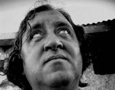 cinico - racconto di Iannozzi Giuseppe