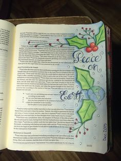 Luke 2:14. Sherrie Bronniman - Art Journaling: In My Bible