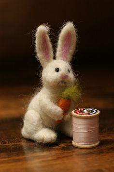 Rabbit | Flickr - Photo Sharing!