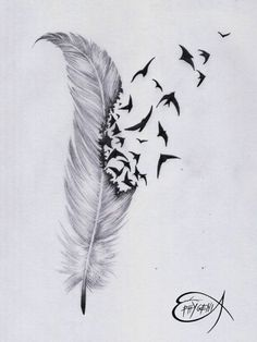 Feather With Birds Flying Out Tattoo 87012 Feather And Bird Drawing Tumblr Feather Tattoo  Ephygenia