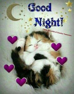 Good night sister and yours, sweet dreams 😋🌜💘🌛🌜☝🌛💖. Good Night Cat, Good Night Sister, Good Night Sleep Tight, Good Night Prayer, Cute Good Night, Good Night Friends, Good Night Blessings, Good Night Sweet Dreams, Day For Night