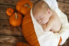 Newborn photography with Halloween theme. A little pumpkin!