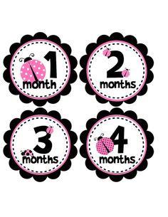 Monthly Onesie Stickers Pink Ladybugs for Baby by BuddhaBellies...i didn't use these each month with S, but i could use them for her party by pairing them each with that month's picture of her