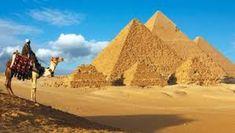 Discover the best of Egypt and its ancient treasures in 2020 and 2021 with our range of tours led by qualified Egyptologist guides with visits to the Pyramids and Luxor, Nile cruising and more. Apollo 11, Plagues Of Egypt, Nile River Cruise, Egypt Map, Cairo Egypt, Luxor Temple, Great Pyramid Of Giza, Valley Of The Kings, Pyramids Of Giza