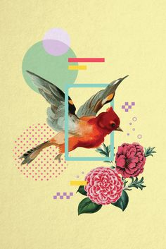 Creative Layout Ideas From 50 Beautiful Print and Digital Photo Collages