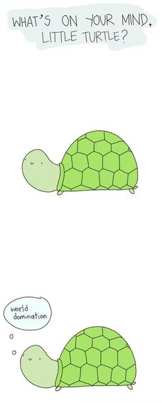 Me too, little turtle, me too.