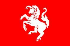 De officiële vlag van de regio Twente met het Twentse Ros.
