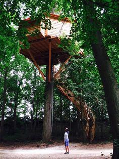 Les Cabanes des Grands Chênes, en Picardie