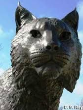 This is the statue of Bowman the Wildcat. I pass it every day on my way to class. Every time I pass the statue I wonder where its name came from. There is also a new food place near it called bowman den. Is the statue named after someone? Did that person donate the money for the statue?