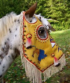 Modern-day Indian Horse Mask w/ fringe, feathers, & beading. Native American Horses, Native American Regalia, Native American Artwork, Native American Beauty, Native American Artifacts, American Indian Art, Native American Beading, Native American History, Indian Artifacts