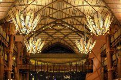 Disney - Animal Kingdom Lodge by Express Monorail, via Flickr