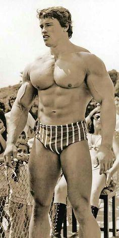 ILYKS.COM - Arnold Schwarzenegger At Venice Bench At Venice