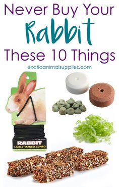 Keep your bunny safe and healthy by avoiding buying these 10 treats, foods, and rabbit supplies. These items are toxic or dangerous to pet rabbits. supplies 10 Things You Should Never Buy Your Pet Rabbit Pet Bunny Rabbits, Pet Rabbit, Bunnies, Bunny Bunny, Rabbit Toys, Rabbit Diet, Rabbit Food List, Bunny Supplies, Small Pet Supplies