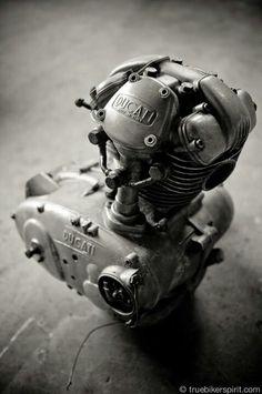 160cc of Ducati Desmodromic loveliness