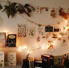 Fairy lights make your shared room really cozy - Zimmer Pflanzen - Dorm Room Baby Furniture Sets, Deco Cool, Dorm Room Organization, Organization Ideas, Uni Room, Decoration Bedroom, Room Decorations, Room Ideas Bedroom, Nursery Ideas