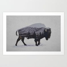 The American Bison Art Print by Davies Babies | Society6