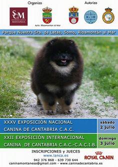 Exposición Nacional e Internacional Canina Cantabria 2016