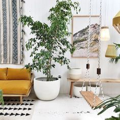 We have loads of new plants, pots and two new stunning photography prints by Jessica Tremp in our Melbourne store. ✨