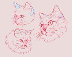 the five panini man 🤪 ( Warrior Cats, Warrior Cat Drawings, Animal Sketches, Art Drawings Sketches, Animal Drawings, Cat Drawing Tutorial, Drawing Base, Cartoon Kunst, Cartoon Art