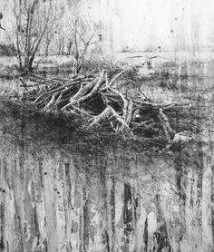 Michael Wann(Irish) aftermath    2011 charcoal and wash on canvas