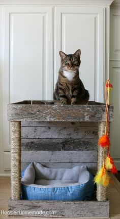 It's time to pamper our kitties a bit! It's time to pamper our kitties a bit! This Cat Condo that is made from a wood pallet has a spot for feeding, relaxing, playing and scratching. Pallet Swing Beds, Pallet Decking, Diy Pallet Bed, Diy Pallet Projects, Woodworking Projects, Diy Cat Toys, Headboard Designs, Cat Condo, Cat Furniture