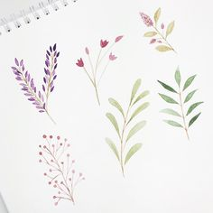 More botanicals 😊 Watercolor Cards, Abstract Watercolor, Watercolour Painting, Watercolor Flowers, Painting & Drawing, Watercolors, Flower Clipart, Leaf Art, Botanical Art
