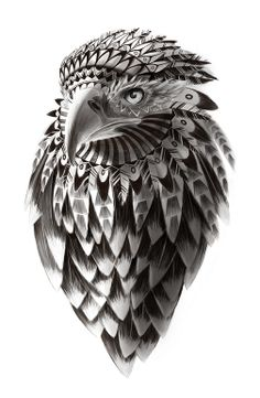 "Saatchi Online Artist: Sassan Filsoof; Pen and Ink Drawing ""Black and White Rendered Shaman American Eagle illustration print"""