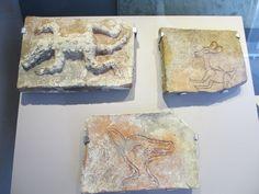 Comalcalco Museo de Sitio 5 - Maya civilization - Wikipedia, the free encyclopedia