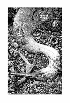 Aaron Horkey Black Lake Art Print Agalloch Concert Poster Letterpress w COA Ink Illustrations, Illustration Art, Omg Posters, Lake Art, Bd Comics, Black And White Illustration, Letterpress Printing, Print Artist, Cool Artwork