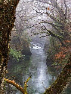 This shot was taken on the bridge in the Quarry walk near Luss, Loch Lomond, Scotland.